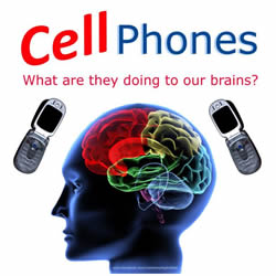 Cell phones and your brain